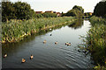 SK6036 : Grantham Canal by Richard Croft