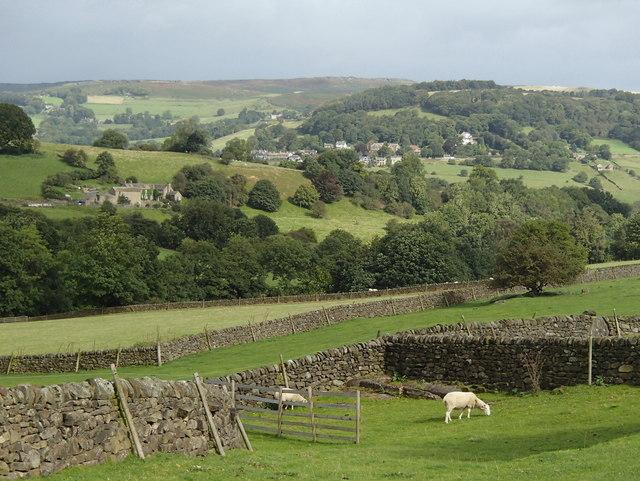 Fields near Tor Farm