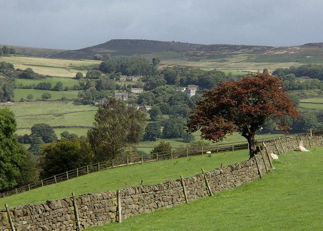 Fields by Tor Farm