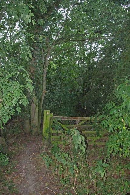 Gate to Thornwood
