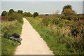 SK6236 : Grantham Canal towpath by Richard Croft