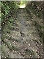 SH7400 : Roman Steps, Machynlleth by Derek Harper