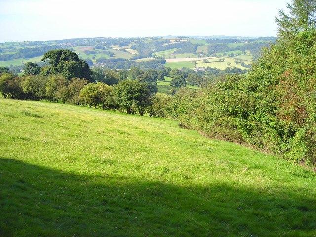 Woods and fields near Holehouse Farm
