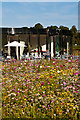 TQ2549 : Priory Park pavilion by Ian Capper