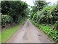 SJ5053 : Reading Room Lane, Bickerton by Jeff Buck