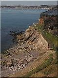 SX9163 : Beacon Cove, Torquay by Derek Harper