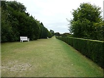TQ1352 : The Terrace Polesden Lacey by Dave Spicer