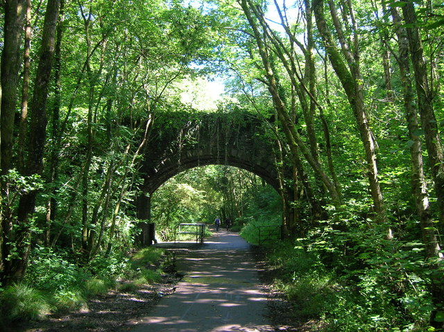 Bridge over the Clyne Valley cycle path