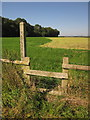 SJ8724 : Footpath past Clanford Covert by Derek Harper