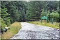 NN2206 : Forestry road, Gleann Mor by Steven Brown