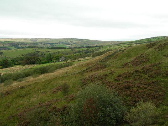 Slopes of Primrose Hill, Uppermill