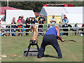 TQ5012 : Lumber jack demonstration, Laughton Show by Oast House Archive