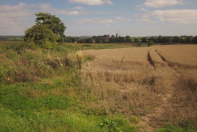 Wheat, Pire Hill