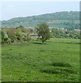 SO5112 : The Wye Valley Monmouth viewed from the B4293 by Jaggery