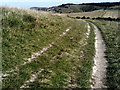 SP9515 : Chalk track on Pitstone Hill by Peter S