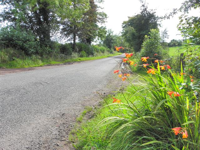 Corboe Road, Raneese