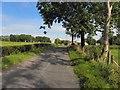 H4861 : Garvallagh Road by Kenneth  Allen