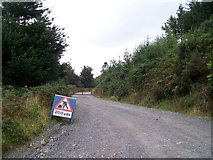 J3630 : Track leading south toward Cragnagore by Eric Jones