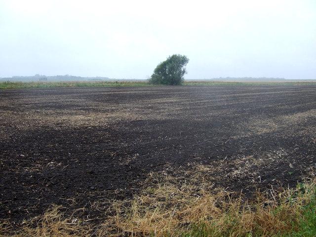 Farmland off the A605