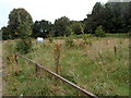 ST2994 : Waste ground, Llantarnam Road, Cwmbran by Jaggery
