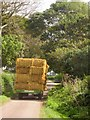 SY2891 : Straw trailer, Green Lane by Derek Harper