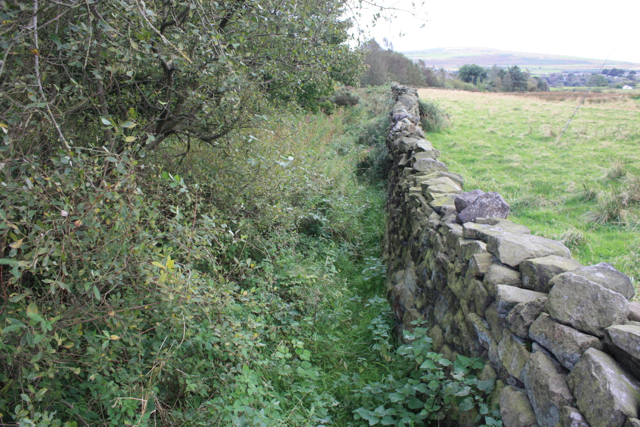 Footpath from Intake Gate towards Old Wood Farm