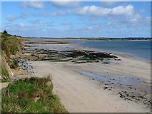S8005 : Fethard Bay by Oliver Dixon