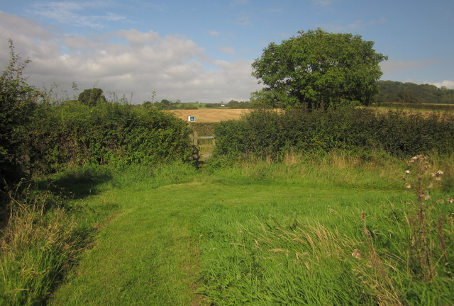 Footpath at Lower Bruckland