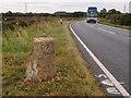 TL1094 : Milestone on the Elton road by Michael Trolove