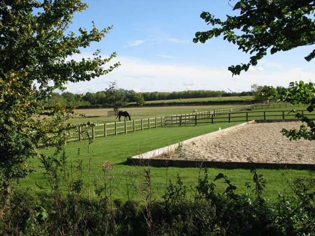 Horse paddock and training area behind St Peter's church