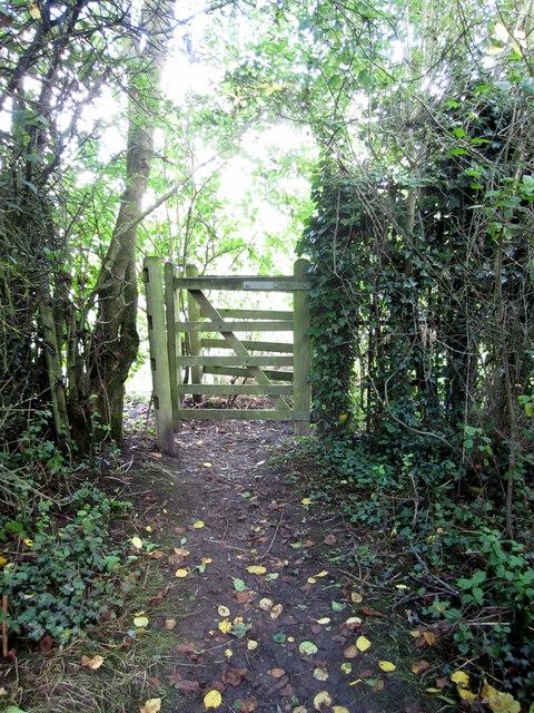 Path to Spring Lane