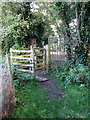 SP7730 : Gate onto Spring Lane by Philip Jeffrey