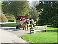 S7219 : Horse-drawn wagon, JF Kennedy Memorial Arboretum by Oliver Dixon