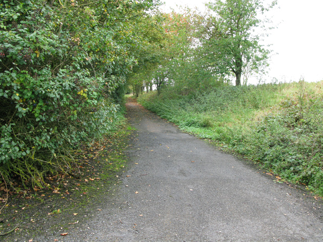 Path alongside the A361 at Broughton Poggs