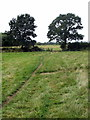SP7633 : Bridleway toThornborough by Philip Jeffrey