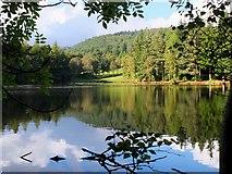 NT4227 : Upper Lake reflections, Bowhill by Jim Barton
