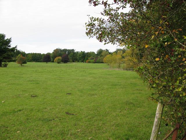 Farmland near Home Farm, Bradwell Grove
