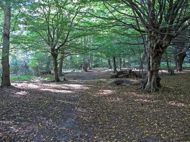 Westward path