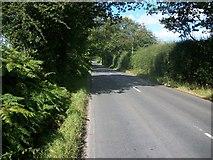 SP9409 : Chesham Road approaching Wigginton Bottom by michael