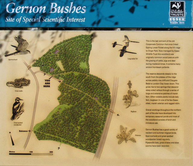 Gernon Bushes information board