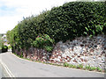 SX9473 : Garden wall and privet hedge by Lower Brimley by Robin Stott