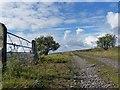 SO1411 : Former Tramroad near to Rassau (1) by Robin Drayton