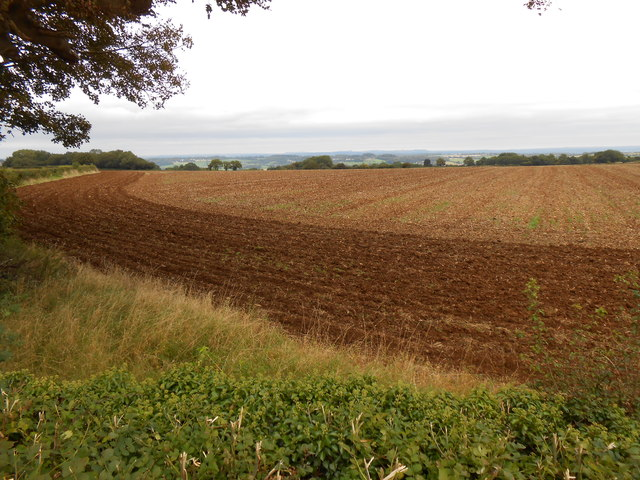 Ploughed Field on Bannerdown.