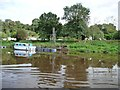 SO8168 : GRP cruiser, east bank of the Severn by Christine Johnstone