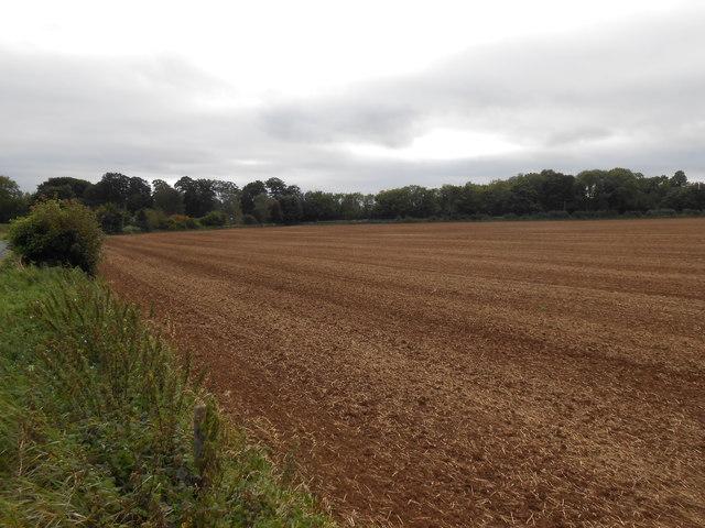 Fields Near Hunters Hall
