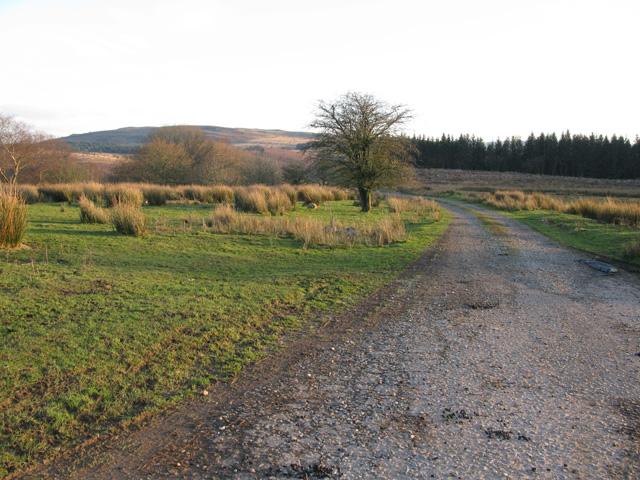 Road to Carn-y-crochan farm
