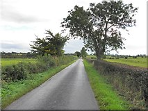 H4963 : Letfern Road by Kenneth  Allen