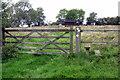 SP7434 : Path to Thornborough Mill by Philip Jeffrey