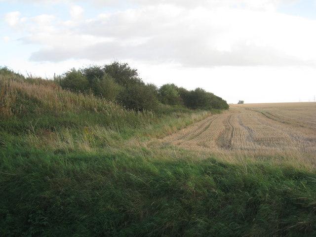 Alongside the railway