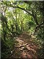 SX9267 : John Musgrave Heritage Trail by Derek Harper